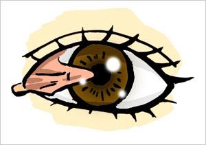 網膜イメージ