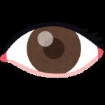 retinitispigmentosa